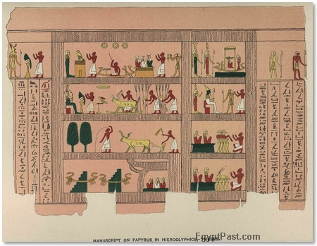 manuscript in hieroglyphics on papyrus